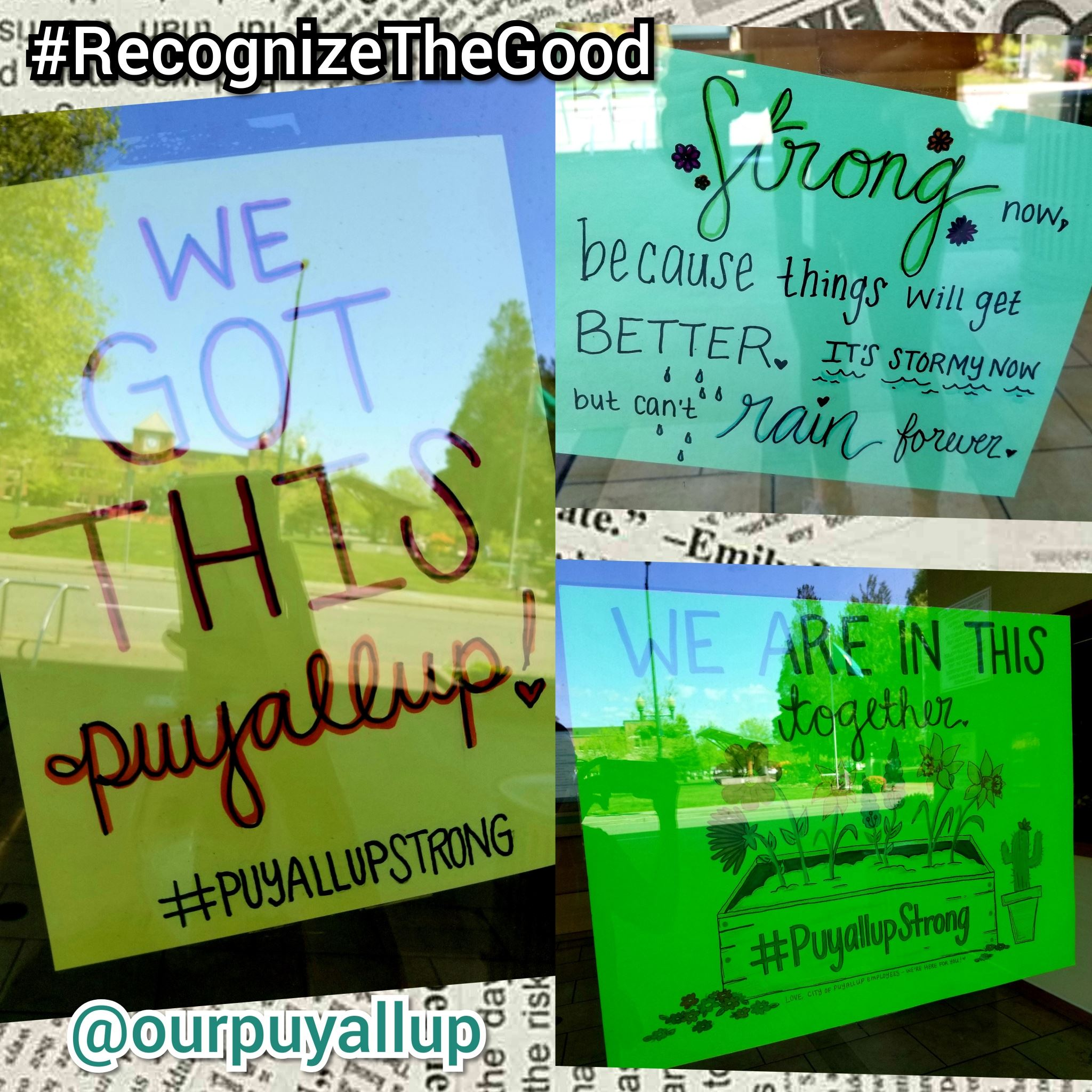Insta Contest 1 - COP  local business_