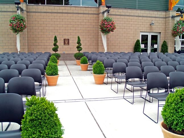Shrubbery in between rows and rows of chairs