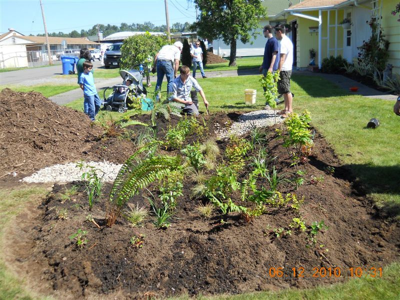 Local Volunteers Plant a Rain Garden