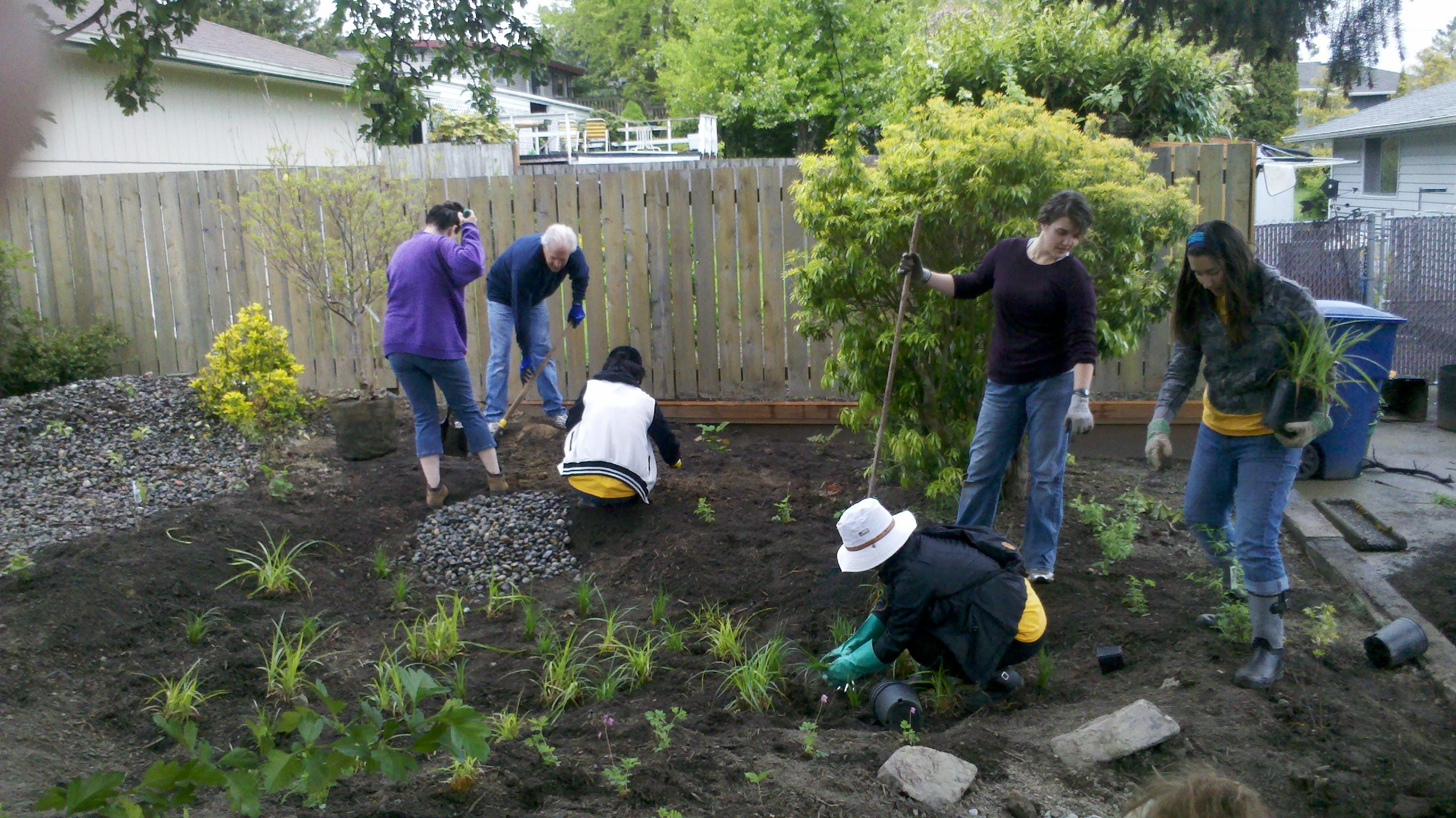 People Work on a Rain Garden