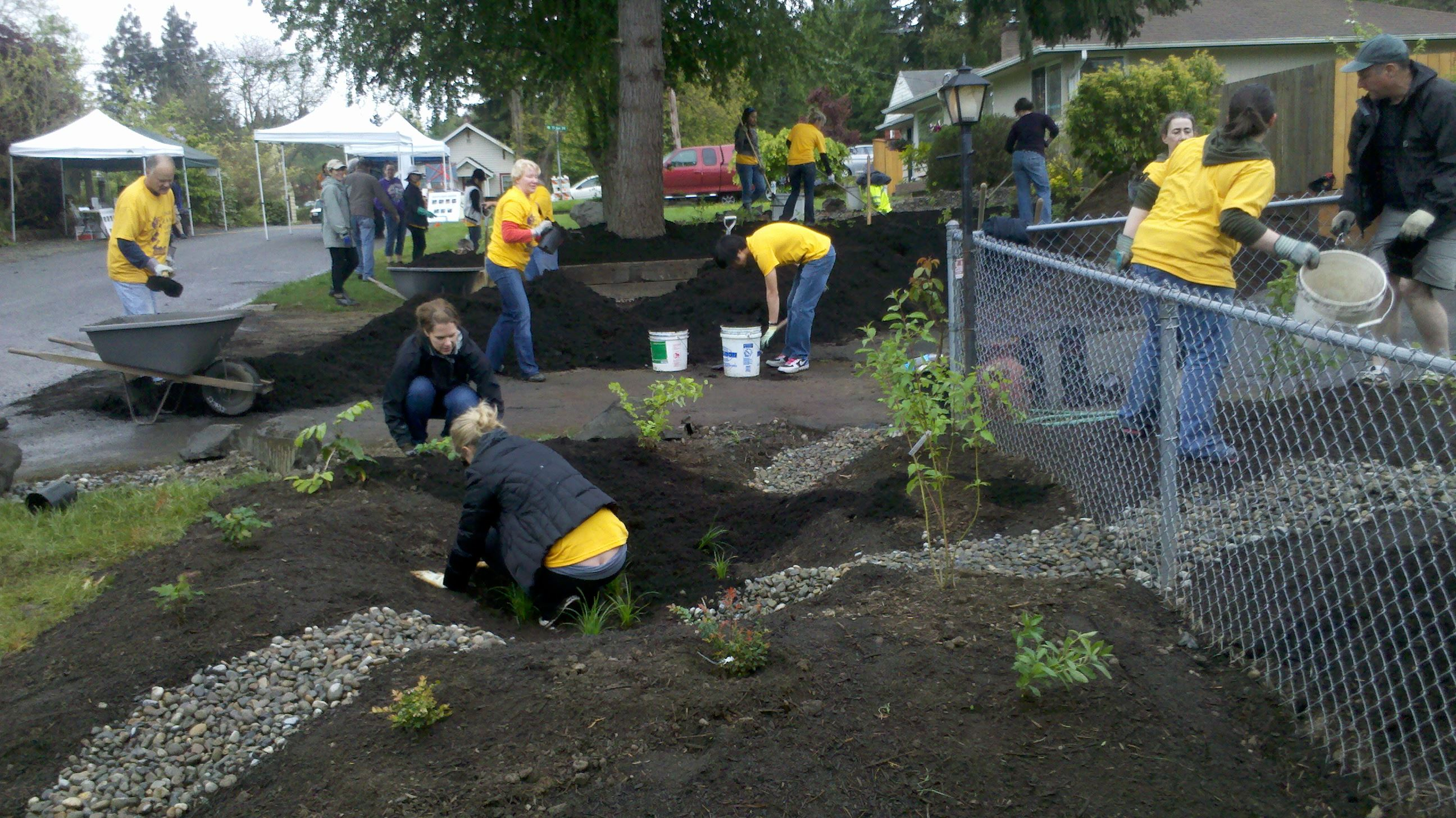 Team of Volunteers Work on a Rain Garden